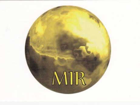 Logo MIR-Methode